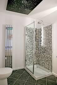 Bathroom Ceilings Fibre Optics In The Bathroom