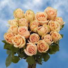 Global Roses Peach Roses Professional Flowers Delivery High And Arena Roses