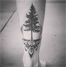 30 creative tree roots designs amazing ideas