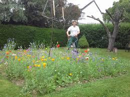 garten und landschaftsbau kassel rasen und beetpflege martin oschmann garten und landschaftsbau