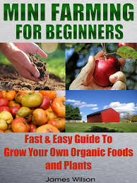 buy mini farming a pictured guide for beginners how to build a