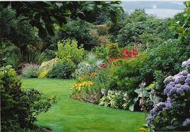 borders front garden ideas photos 21 remarkable garden border
