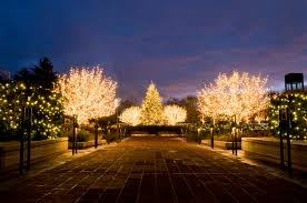 chicago botanic garden enjoy illinois