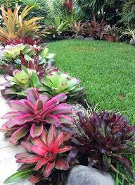 Landscaping Images Best 25 Tropical Landscaping Ideas On Pinterest Tropical Garden