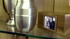 dog cremation give your dog a green burial cnn
