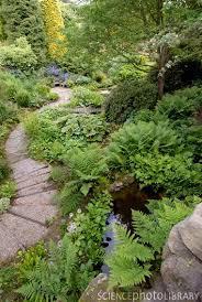 the 25 best garden paths ideas on pinterest pathways garden