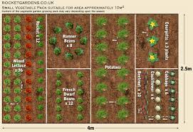 Ideal Vegetable Garden Layout Small Vegetable Garden Layout Plans Designs Landscaping
