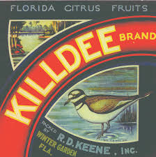 crate labels share w o county u0027s citrus history west orange