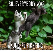 Fu Memes - 25 best memes about everybody was kung fu everybody was kung