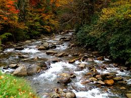 Tennessee Scenery images Streams and landscape in great smoky mountains national park jpg