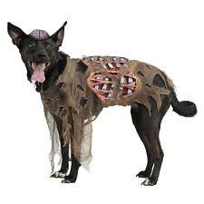 dog halloween costume ebay