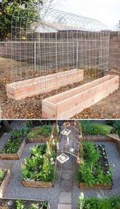 22 ways for growing a successful vegetable garden concrete
