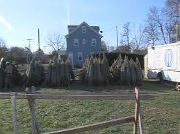 buy christmas tree buy a christmas tree help a kid