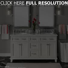Bathroom Double Vanity Ideas Double Vanities For Bathrooms Bathroom Decoration