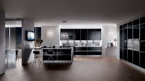 Black Kitchen Designs Photos 35 Exciting Modern Kitchen Color Schemes With Pictures