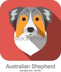 australian shepherd emoji shepherd vector vectors stock photos u0026 shepherd vector vectors