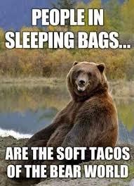 Sleeping In Meme - people in sleeping bags bear meme