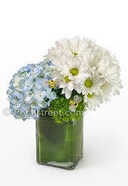 Modern Flower Vase White Daisies U0026 Blue Hydrangea Vase Arrangement Pt Pleasant Nj