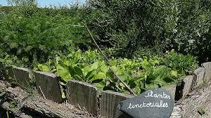 cuisine nature et d馗ouverte cuisine cuisine nature et découverte cuisine nature et