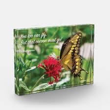 yellow butterfly acrylic block