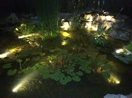 best submersible pond lights why adding led lighting to your pond is a must maryland