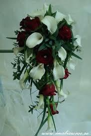 wedding flowers etc scaboius stellata wedding flowers etc wholesale