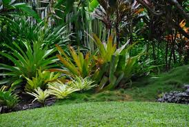 Australian Garden Ideas by Tabu U0027 Queensland U2013 Our Australian Gardens