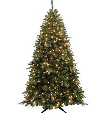 tree tree david jones
