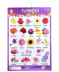 flowers list in india u2013 thin blog