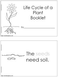 flower life cycle worksheet worksheets