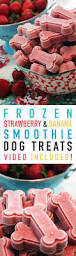 frozen strawberry and banana smoothie dog treats recipe frozen