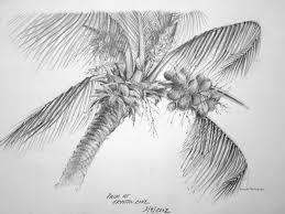 palm tree yvonne pecor mucci