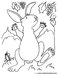 rabbit coloring picture create a printout or activity