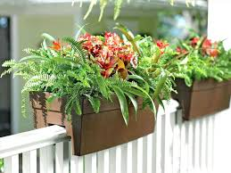 Window Flower Boxes Tall Rhhotelfranksfinfo Rectangular Planter Boxes Lowes Planters