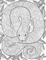 el libro la selva coloring coloring books zentangle