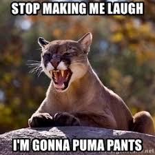 Puma Meme - puma pants meme puma online store sneakers puma
