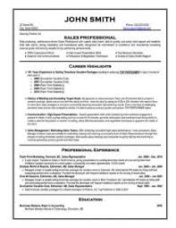 download professional resume example haadyaooverbayresort com