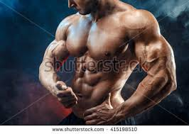 Chest And Shoulder - bodybuilding stock images royalty free images vectors