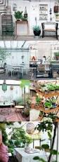 Indoor Garden Design by 80 Best Indoor Garden Rooms Images On Pinterest Home Plants And