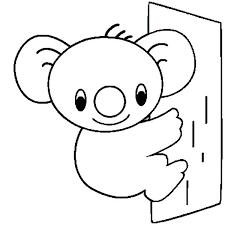 baby koala bear coloring pages printable coloring sheets