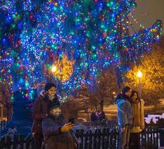 Heritage Park Christmas Lights Millennium Park In Chicago Find Park Info Events U0026 Tours