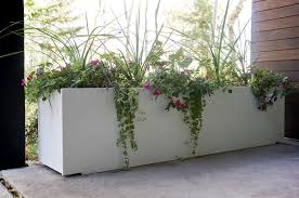 natural large planters for outdoors homesfeed