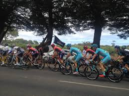 share the damn road cycling jersey bicycling pinterest road velominati u203a to bidon or not to bidon