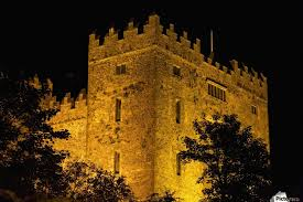 lights illuminating bunratty castle with silhouetted trees