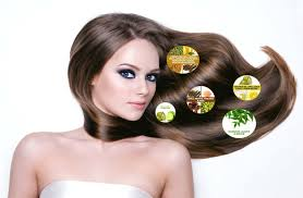 natural remedies for hair loss bloggerkeeda