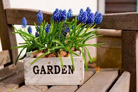 flower gardening flower garden ideas backyard flower gardens