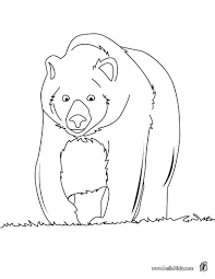 big brown bear coloring pages hellokids com