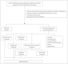 movement disorders in non wilsonian hepatic cirrhotic patients