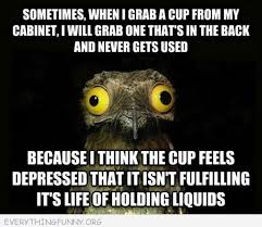 Funny Bird Memes - funny memes archives everything funny