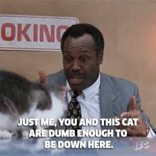 Danny Glover Meme - movies cats gif find download on gifer